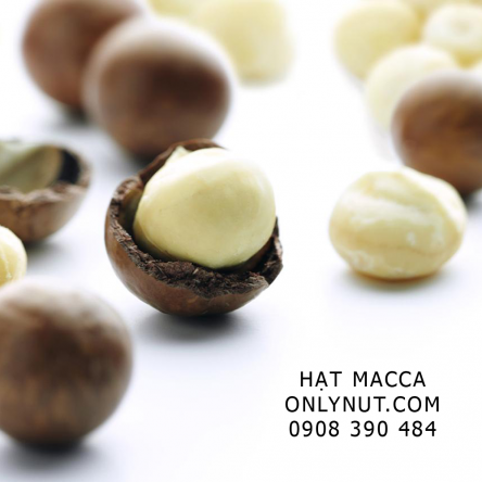 Hạt mắc ca Macadamia Úc gói 500 gram